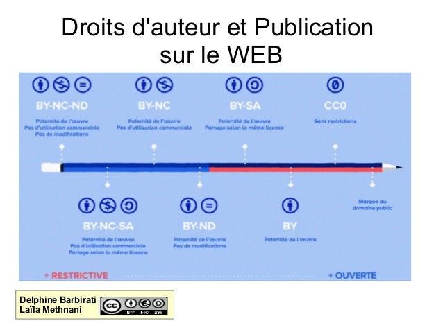 Droits d'auteur et Publication sur le WEB Delphine Barbirati Laïla Methnani