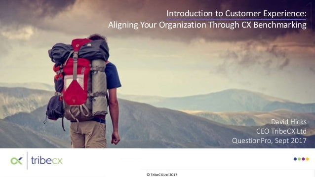 © TribeCX Ltd 2017 David Hicks CEO TribeCX Ltd QuestionPro, Sept 2017 Introduction to Customer Experience: Aligning Your O...
