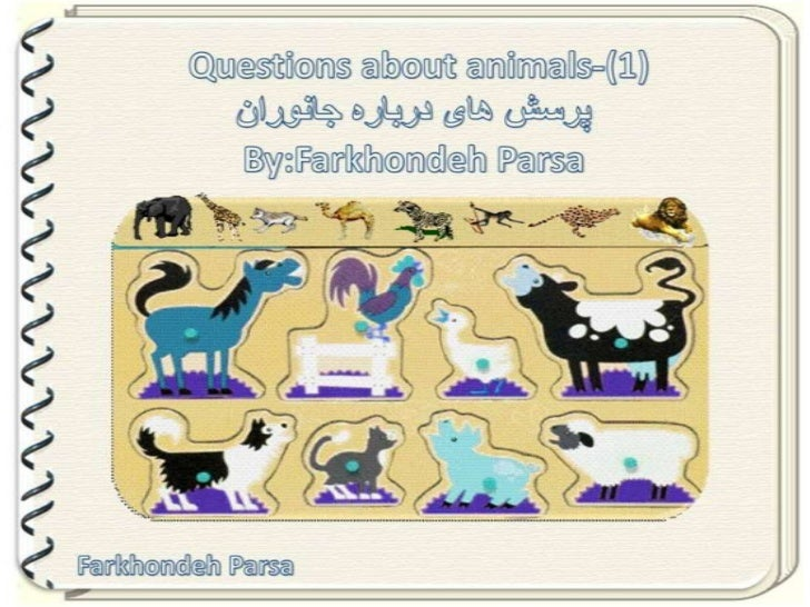 Questions about animals 1