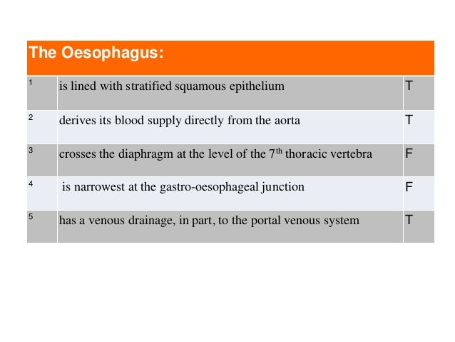 The Oesophagus: 1 is lined with stratified squamous epithelium T 2 derives its blood supply directly from the aorta T 3 cr...