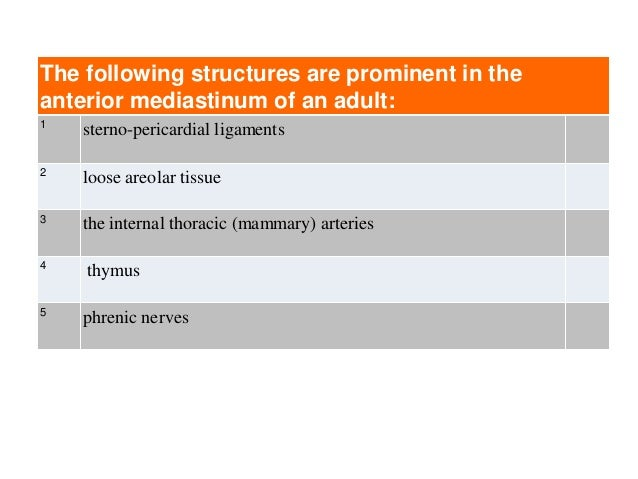 The following structures are prominent in the anterior mediastinum of an adult: 1 sterno-pericardial ligaments 2 loose are...