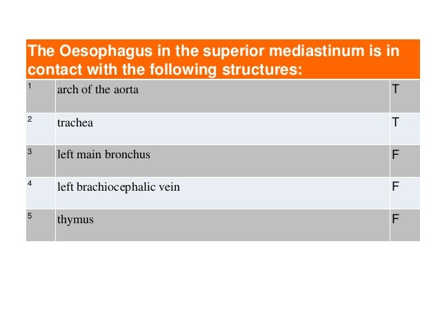The Oesophagus in the superior mediastinum is in contact with the following structures: 1 arch of the aorta T 2 trachea T ...