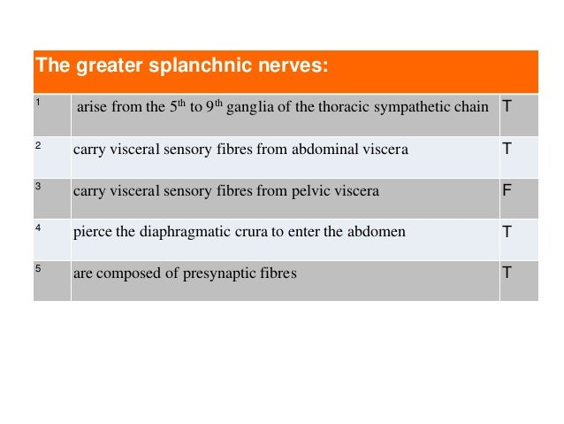 The greater splanchnic nerves: 1 arise from the 5th to 9th ganglia of the thoracic sympathetic chain T 2 carry visceral se...