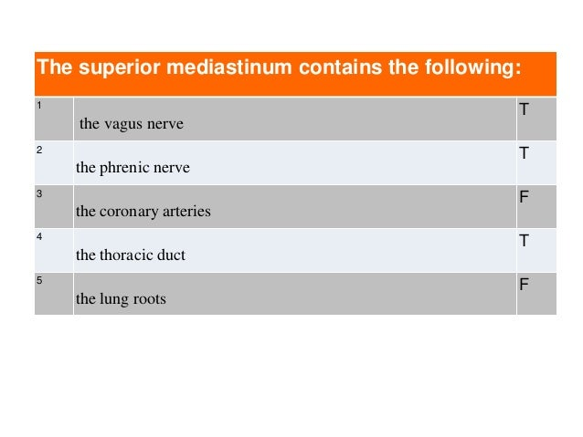 The superior mediastinum contains the following: 1 the vagus nerve T 2 the phrenic nerve T 3 the coronary arteries F 4 the...