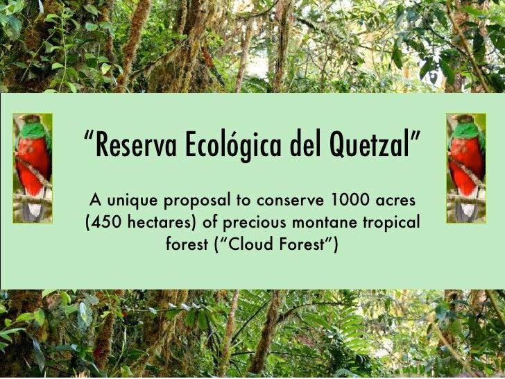 """""""Reserva Ecológica del Quetzal""""  A unique proposal to conserve 1000 acres (450 hectares) of precious montane tropical     ..."""