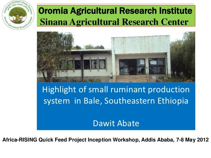 Oromia Agricultural Research Institute             Sinana Agricultural Research Center               Highlight of small ru...