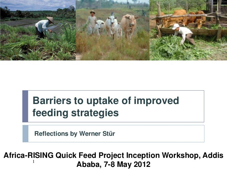Barriers to uptake of improved       feeding strategies        Reflections by Werner StürAfrica-RISING Quick Feed Project ...