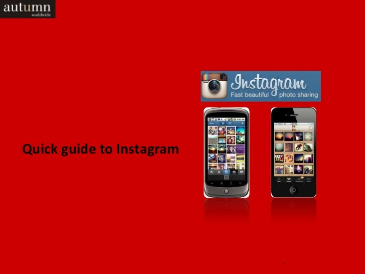 Quick guide to Instagram                           1