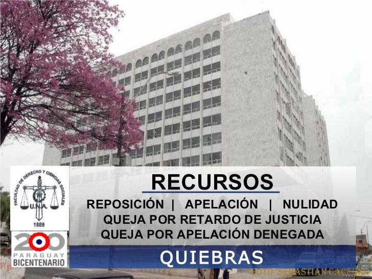 RECURSOS QUIEBRAS REPOSICIÓN     APELACIÓN     NULIDAD QUEJA POR RETARDO DE JUSTICIA QUEJA POR APELACIÓN DENEGADA