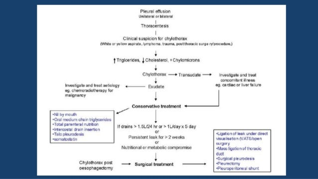 OCTREOTIDE Y SOMATOSTATINA • El octreotide es una análogo de la somatostatina el cual reduce la producción de quilo intest...