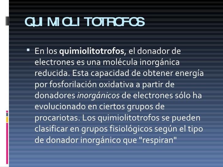 Quimiolitotrofos