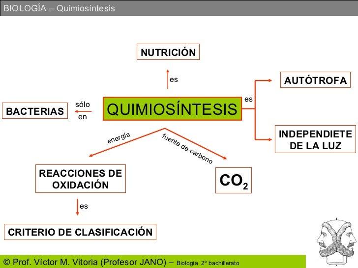 Resultado de imagen de Quimiosíntesis