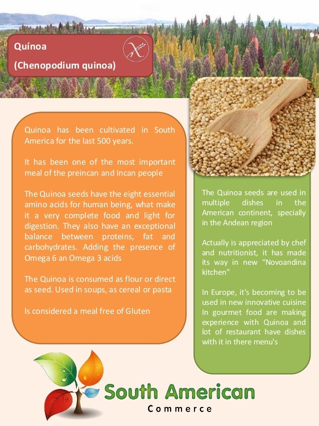 Quinoa has been cultivated in South America for the last 500 years. It has been one of the most important meal of the prei...