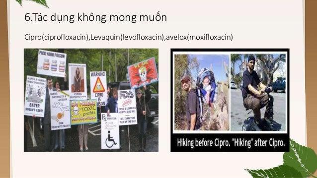 Avelox Cipro Levaquin Conversion Dosing