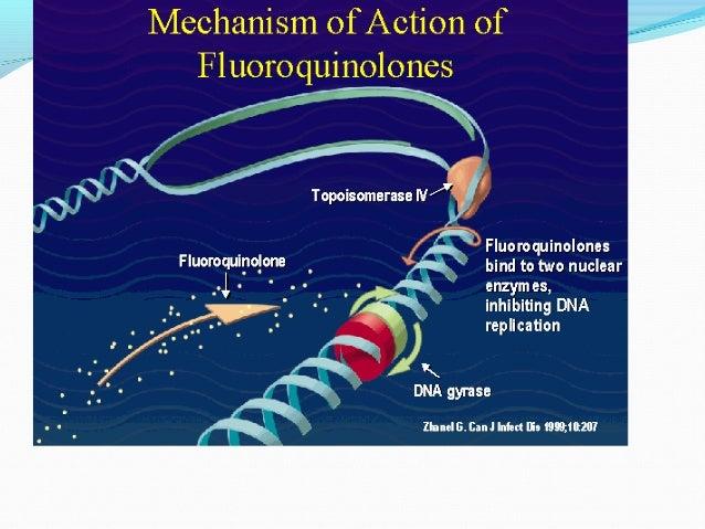 fluorinated corticosteroid list