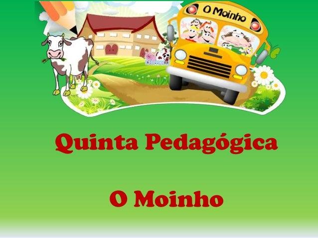 Quinta Pedagógica O Moinho
