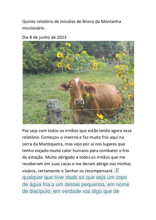 Quinto relatório de missões de Bruno da Montanha missionário .  Dia 8 de junho de 2013  Paz seja com todos os irmãos que e...