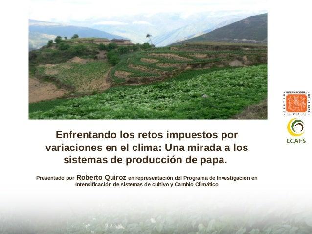 Enfrentando los retos impuestos por  variaciones en el clima: Una mirada a los  sistemas de producción de papa.  Presentad...