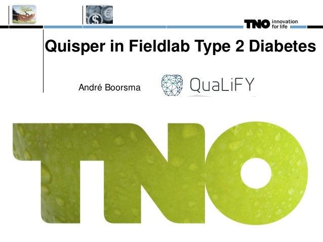 Quisper in Fieldlab Type 2 Diabetes André Boorsma