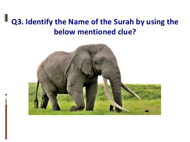 Q3. Identify the Name of the Surah by using the below mentioned clue?