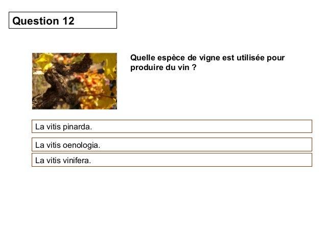 Quelle espèce de vigne est utilisée pour  produire du vin ?  Question 12  La vitis pinarda.  La vitis oenologia.  La vitis...