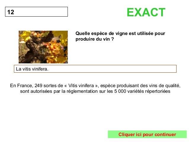 Quelle espèce de vigne est utilisée pour  produire du vin ?  12  La vitis vinifera.  EXACT  En France, 249 sortes de « Vit...