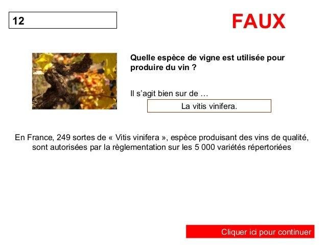 FAUX  Quelle espèce de vigne est utilisée pour  produire du vin ?  12  Il s'agit bien sur de …  La vitis vinifera.  En Fra...