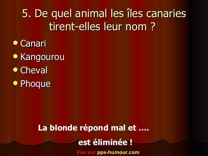5. De quel animal les îles canaries tirent-elles leur nom ?  <ul><li>Canari </li></ul><ul><li>Kangourou </li></ul><ul><li>...