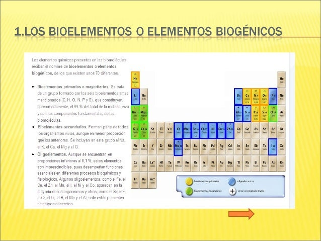 1)MOLÉCULA APOLAR 2)MOLÉCULA POLAR (dipolo) 3)BIOELEMENTO 4)GRUPO FUNCIONAL 5)INSATURACIÓN