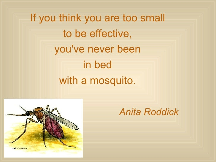 If you think you are too small  to be effective,  you've never been  in bed  with a mosquito.  Anita Roddick