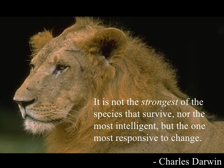 It is not the  strongest  of the species that survive, nor the most intelligent, but the one most responsive to change. - ...