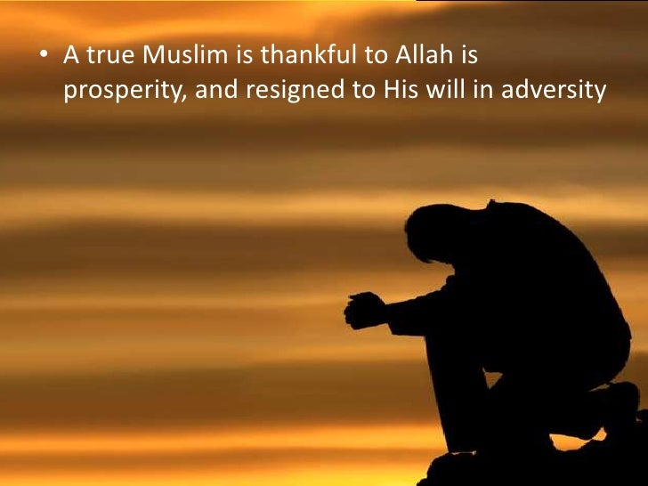 essay on a true muslim Free essay on the true islamic morals available totally free at echeatcom, the largest free essay community.
