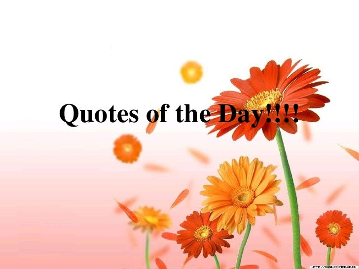 Quotes of the Day!!!!<br />