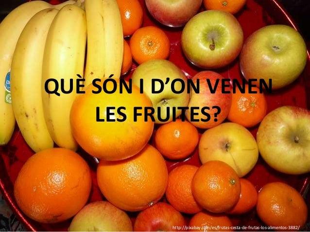 QUÈ SÓN I D'ON VENEN    LES FRUITES?           http://pixabay.com/es/frutas-cesta-de-frutas-los-alimentos-3882/