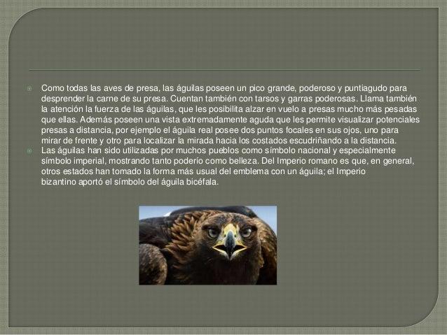  El guacamayo macao (Ara macao) es una especie de ave perteneciente a la familia de las psitácidas. Además, es una de las...