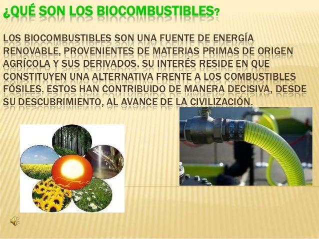 qu u00e9 son los biocombustibles  1