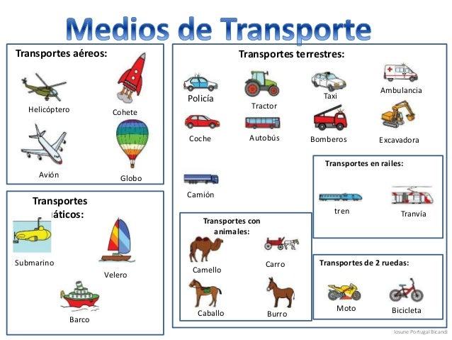 Quã© transporte es