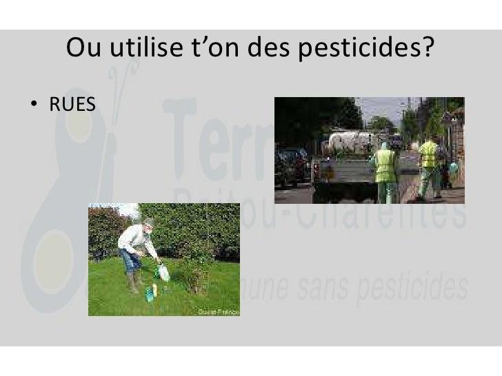 Ou utilise t'on des pesticides?<br />RUES<br />