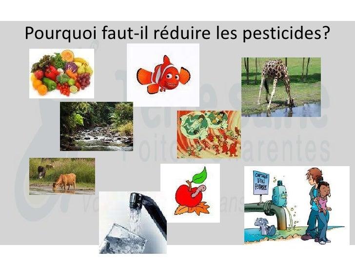 Pourquoi faut-il réduire les pesticides?<br />