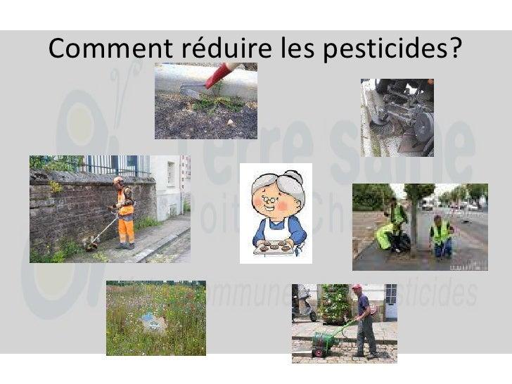 Comment réduire les pesticides?<br />