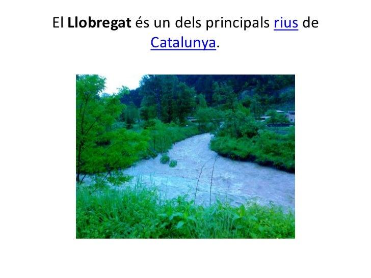 El Llobregat és un dels principals rius de Catalunya.<br />