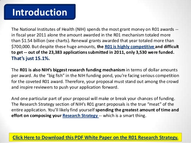 How To Write A Research Proposal Nih The Internet And World Wide