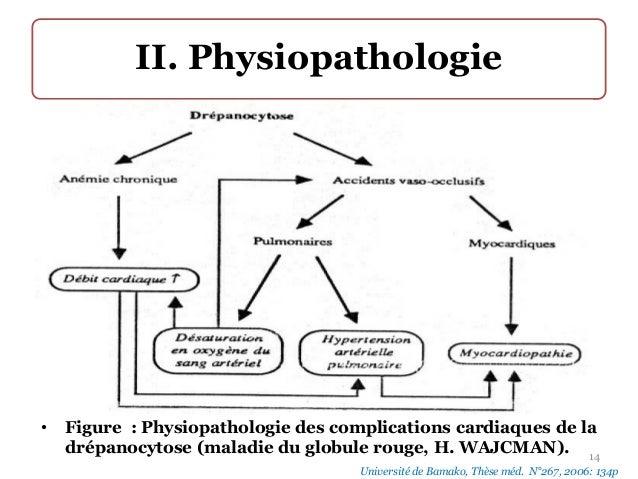 PHYSIOPATHOLOGIE DES AVC PDF DOWNLOAD