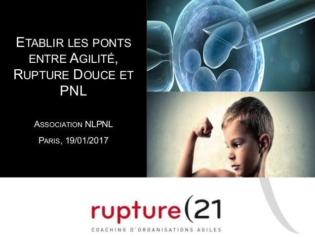 ETABLIR LES PONTS ENTRE AGILITÉ, RUPTURE DOUCE ET PNL ASSOCIATION NLPNL PARIS, 19/01/2017