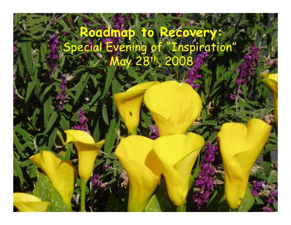 """Roadmap to Recovery: Special Evening of """"Inspiration""""         May 28th, 2008"""