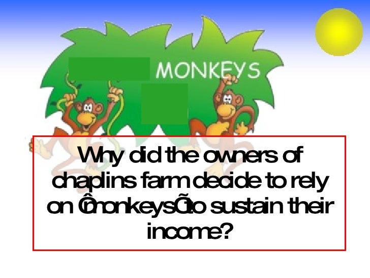 Why did the owners of chaplins farm decide to rely on 'monkeys' to sustain their income?