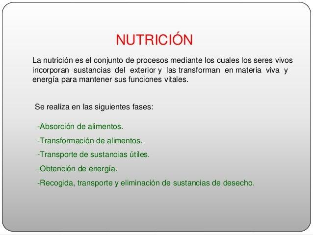 Nutricion atoche Slide 2