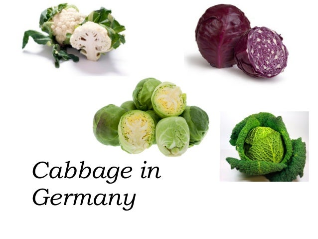 Cabbage in Germany