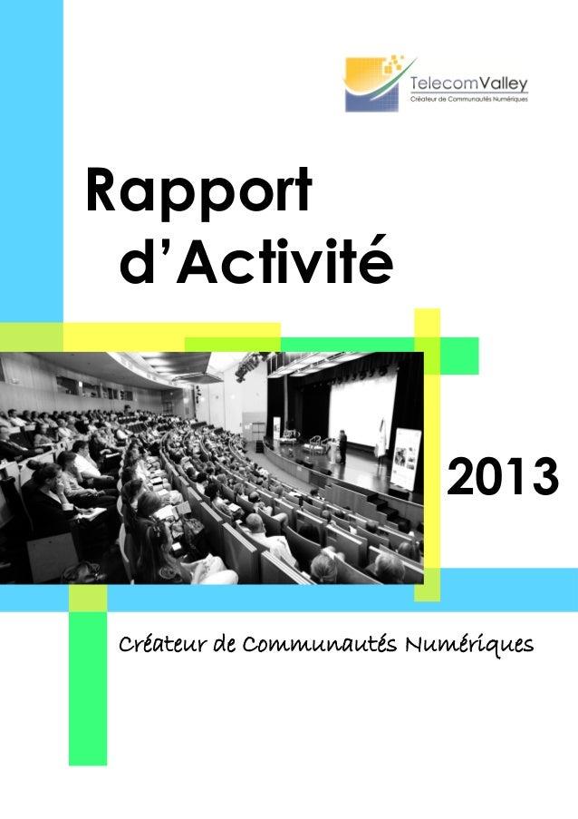 2013 Rapport d'Activité Créateur de Communautés Numériques