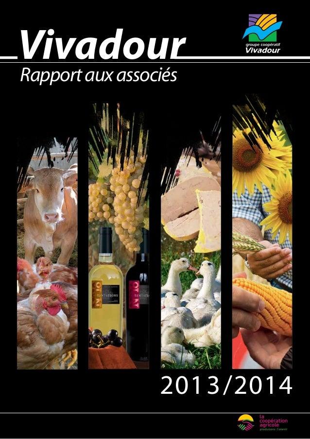 Vivadour  Rapport aux associés  2013/2014